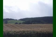 Northumberland17