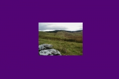 Wales2008_22
